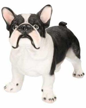 Decoratief beeld van een zwartwitte franse bulldog