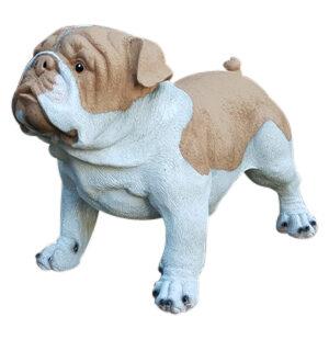 Kunststof beeldje van een bruine engelse bulldog