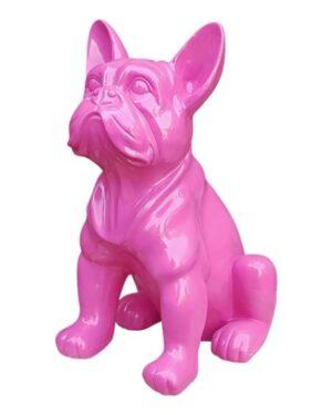 Vrolijke beelden van een franse bulldog