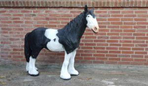 Mooi beeld van een zwart wit tinker paard