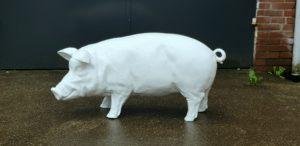 Kunststof beeld van een groot wit varken kopen