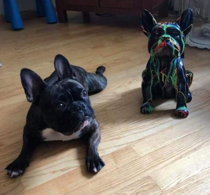 Kunststof beeld van een franse bulldog