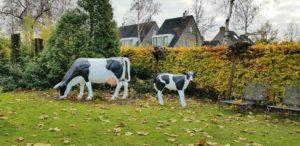Polyester beeld van een koe kopen polyester koe levensgroot voor in de tuin
