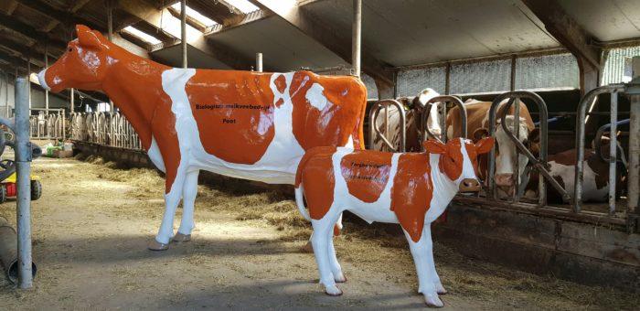 Polyester beeld holstein koe bij melkveebedrijf op erf