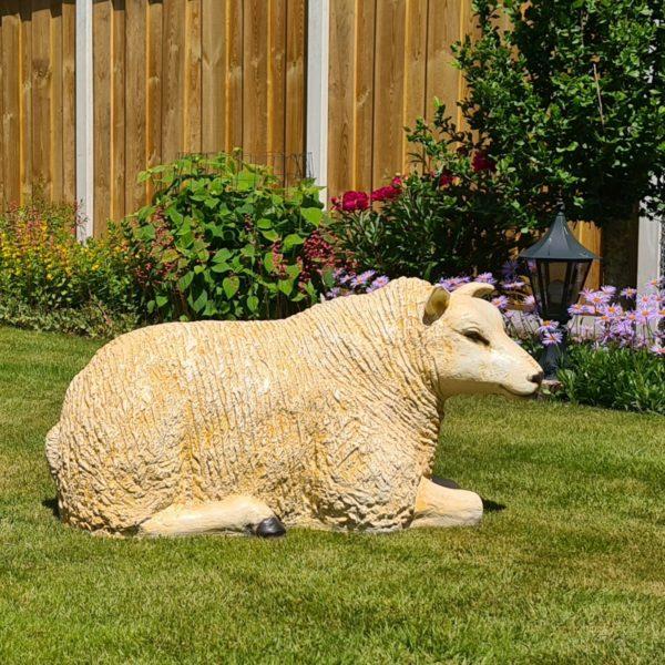 Levensecht beeld van een Texels schaap kopen voor in de tuin