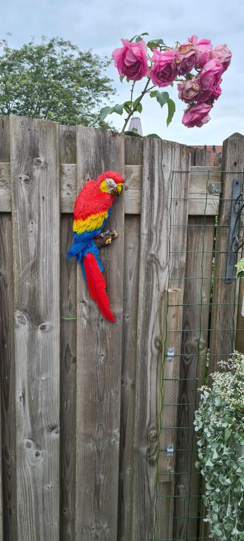 wand decoratie tuindecoratie beelden in tuin van vogels en papegaaien